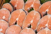 Fresh Salmon Fillets — Stock Photo
