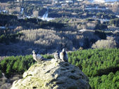 Doves on the stone and snowy mountain background — Stok fotoğraf