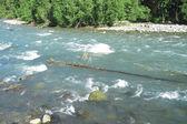 Vahşi kafkasya nehir zelenchuck. arhyz. çerkez cumhuriyeti cumhuriyeti — Stok fotoğraf