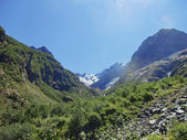 Kaukasus en bos onder heldere blauwe hemel — Stockfoto