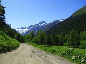 Road leads close to the snowy mountain — Stock Photo