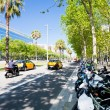 Stock Photo: AvingudDiagonal broadest and most important avenues