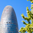 The Torre Agbar skyscraper in Barcelona — Stock Photo