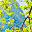 Spring green leafs and Torre Agbar skyscraper in Barcelona — Stock Photo