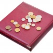 Different coins on red numismatics album — Stock Photo #10532724