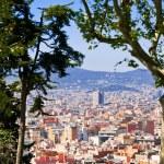 Panorama de la ville de Barcelone depuis la colline de montjuic — Photo