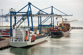 Early morning in cargo seaport — Stock Photo