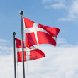 Danish flags — Stock Photo #8404987