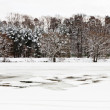 Unfrozen patch of water in frozen  river — Foto Stock