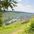 View on Moselle valley and Mosel river in summer day, Germany — Stock Photo