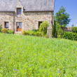 Green grass lawn on backyard of old breton estate — Stock Photo