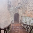 Entrance in medieval Ajlun Castle in foggy day — Stock Photo #9401804