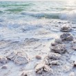 Crystalline salt on beach of Dead Sea — Stock Photo