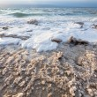 Crystalline salt on beach of Dead Sea — Foto Stock