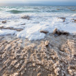 Crystalline salt on beach of Dead Sea — Foto de Stock
