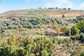 Stone terraces on mountain in Jordan — Stock Photo