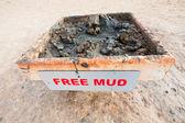 Free mud on coast of Dead Sea — Stock Photo