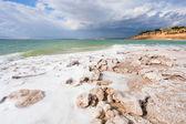 Crystal salt beach on Dead Sea coast — Stock Photo