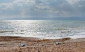 Pebble beach of Dead sea in Jordan — Stock Photo