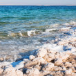 Stock Photo: Crystalline coastline of Dead Sea