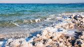Crystalline coastline of Dead Sea — Stock Photo