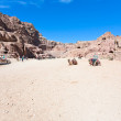 Stock Photo: Panorama of Street of Facades, Petra