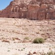 Panorama of Royal Tombs in Petra — Stock Photo #9930419