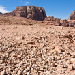 Stone wildness in mountain valley in Petra, — Stock Photo