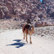 Stock Photo: Camel and bedouin in Petrvalley in antique city Petra