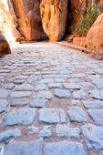 Antique roman cobbled road in Siq passage in city Petra — Stock Photo