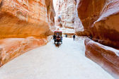 Bedouin carriage in Siq passage to Petra city — Stock Photo
