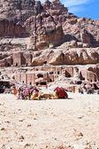 Bedouin camp on Street of Facades, Petra, Jordan — Stock Photo