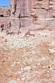 Ruins of ancient city Petra and bedouin donkey — Stock Photo
