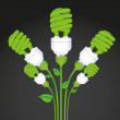 Planting of ecological bulb — 图库矢量图片