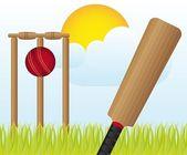 Cricket set — Stock Vector
