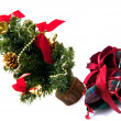 Gift under the Christmas tree — Stock Photo #8089408