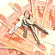 Stock Photo: Banknotes and house keys