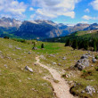 Mountain hiking trail — Stockfoto