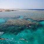 Snorkeling — Stock Photo #9339952