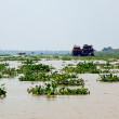 Mekong delta — Stock Photo #10064363