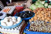 Eggs variety — Stock Photo