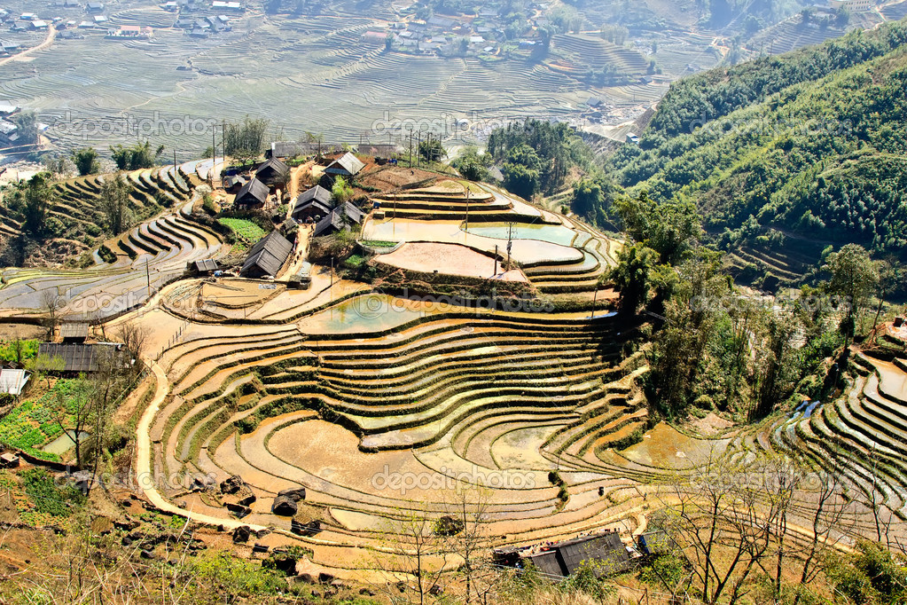 Village and rice fields in Sapa region — Stock Photo #10060864