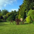 Stock Photo: English garden