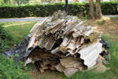 Illegal deposit of asbestos in the town public park — Stock Photo