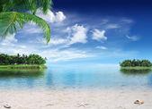 Paraíso tropical — Foto de Stock