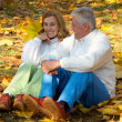 Old couple sits on leaves - Stock Photo