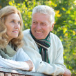 Stock Photo: Old couple at park