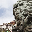 tibet: stone lion — Stock Photo