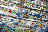Tibet: prayer flags — Stock Photo