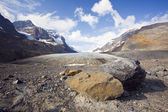 Glacier athabasca — Photo